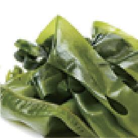 アラリアエスクレンタエキス(保湿成分)