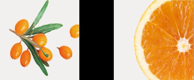 ヒポファエラムノイデス果実油(サジーオイル)オレンジ果実水