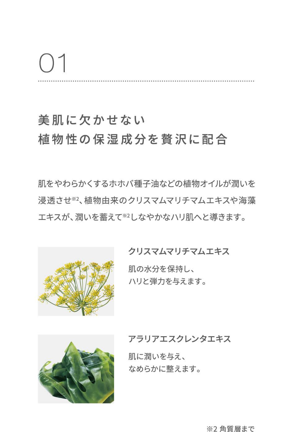 美肌に欠かせない植物性の保湿成分を贅沢に配合