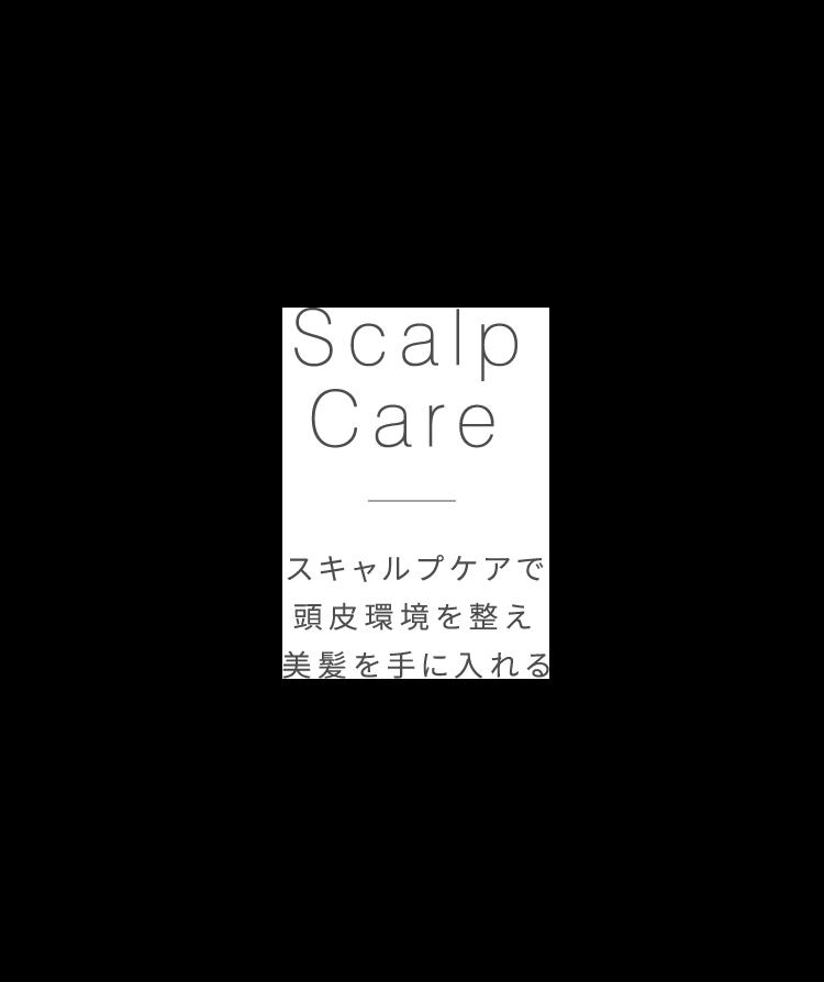 Scalp Care スキャルプケアで頭皮環境を整え美髪を手に入れる
